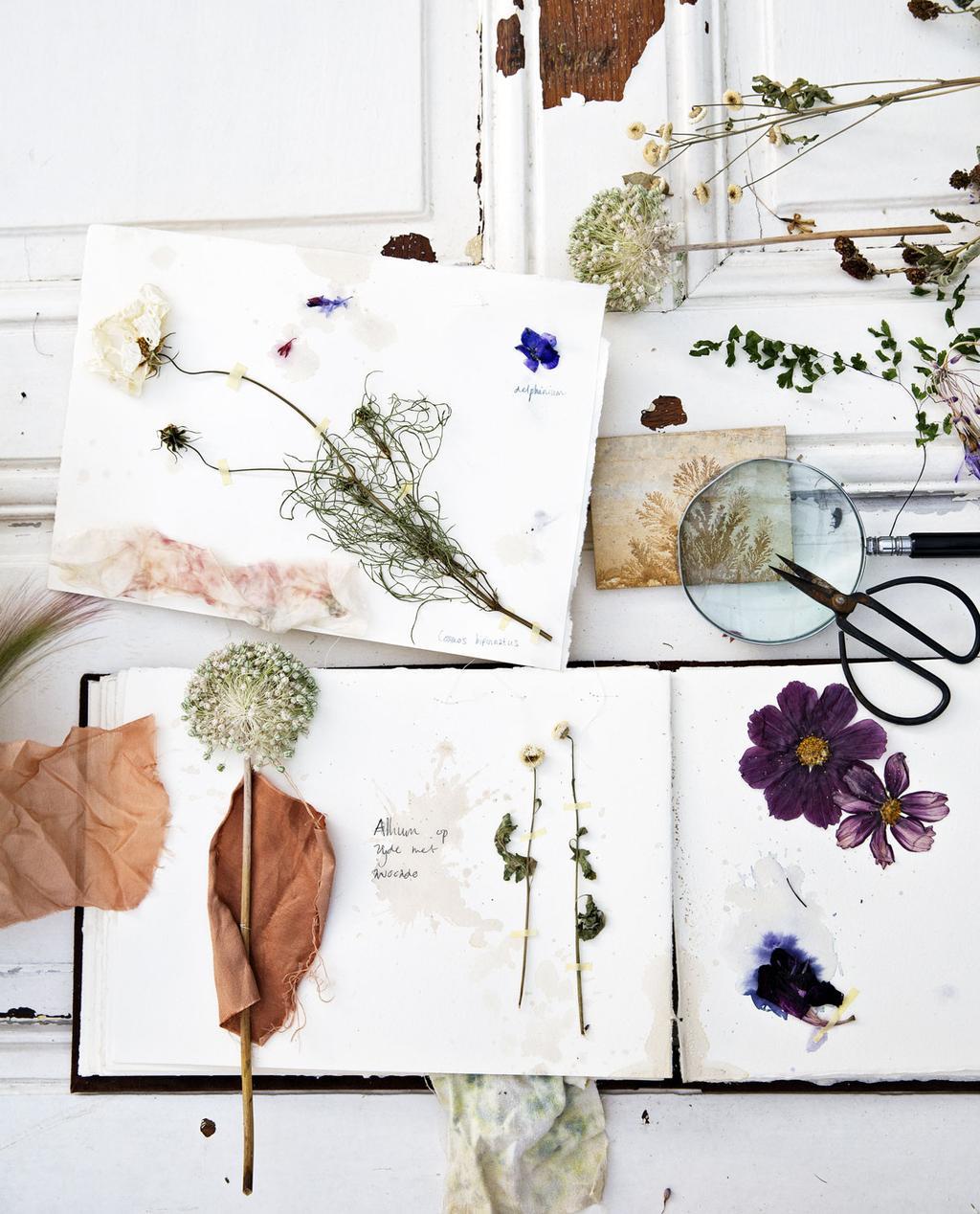 Een bureau met gedroogde bloemen op papier