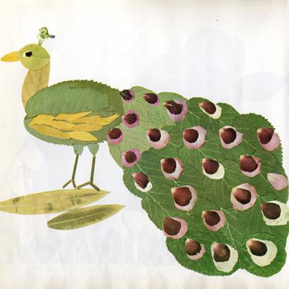pauw-van-bladeren