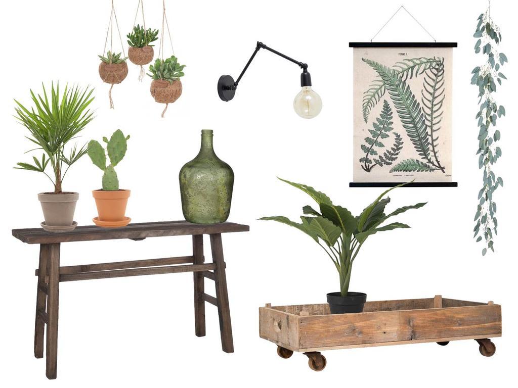 Shop in de stijl van een groen interieur