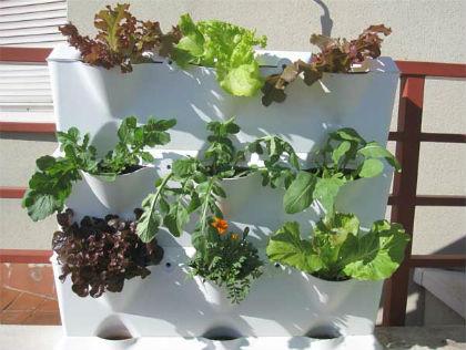 Minigarden - verticale minituin