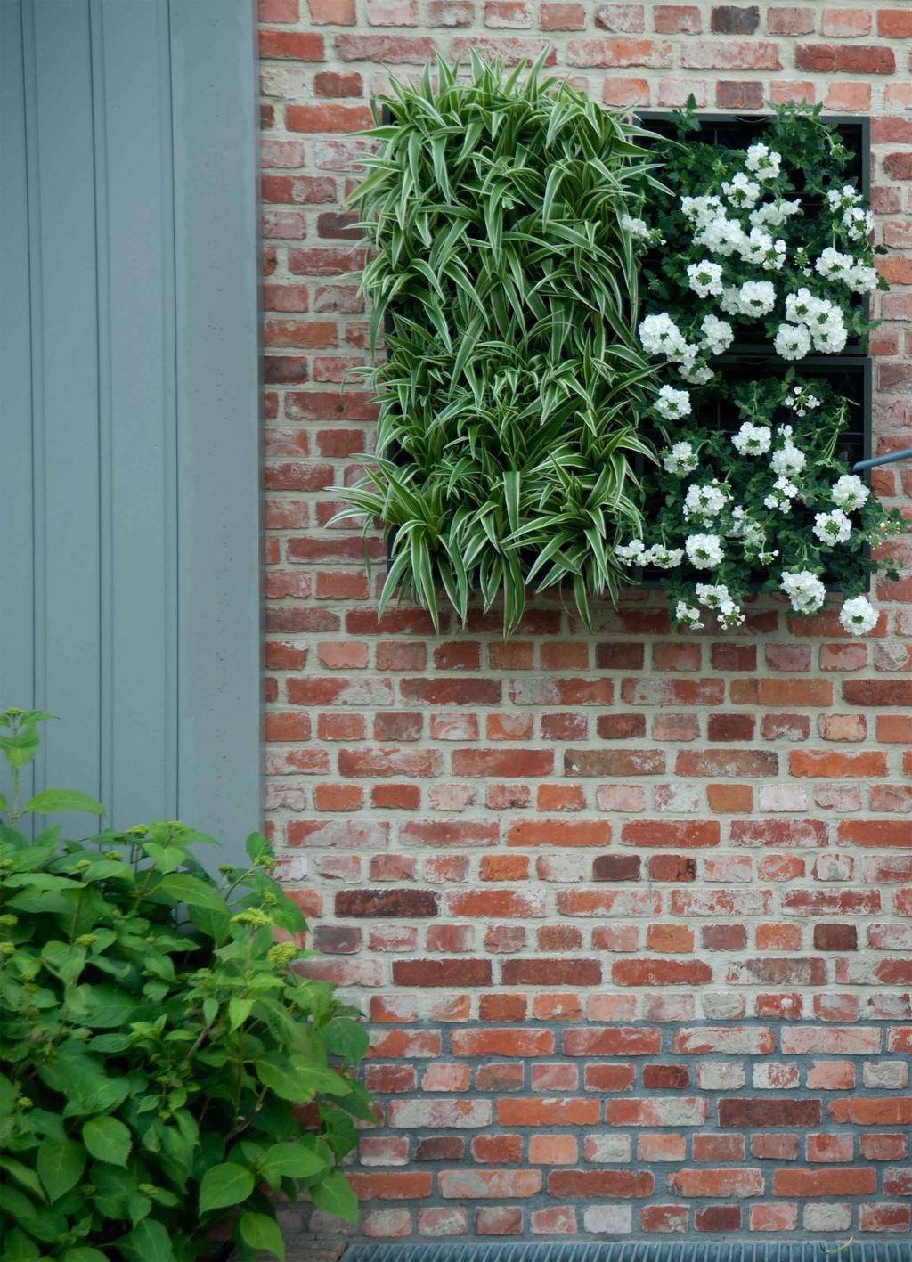Verticaal tuinieren - D&M Depot - vtwonen