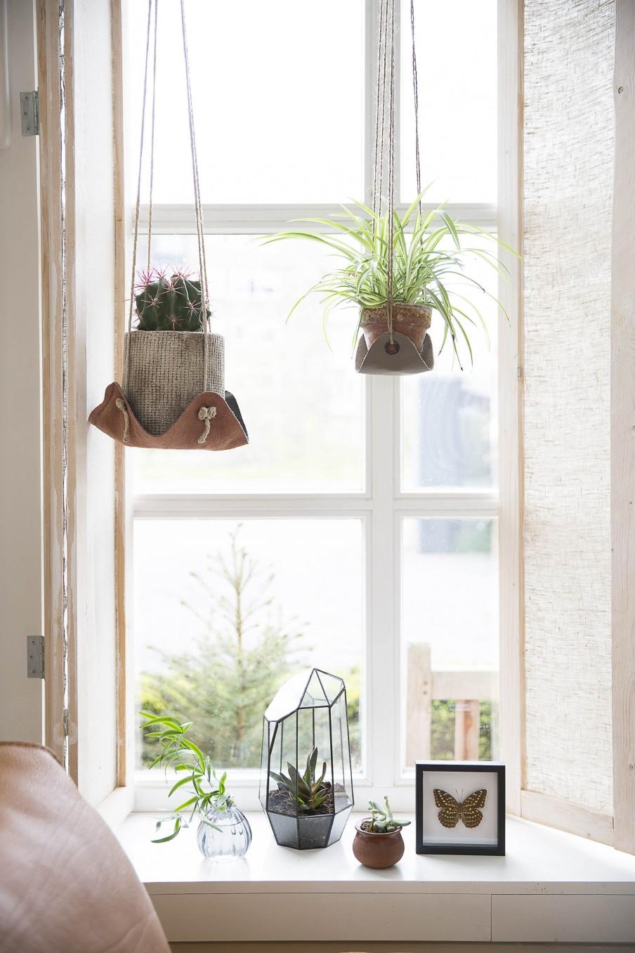 apprendre suspensions plantes cuir