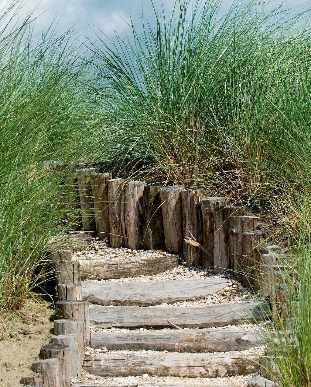 vtwonen blog kristel | strandgevoel in tuin helmgras oud hout
