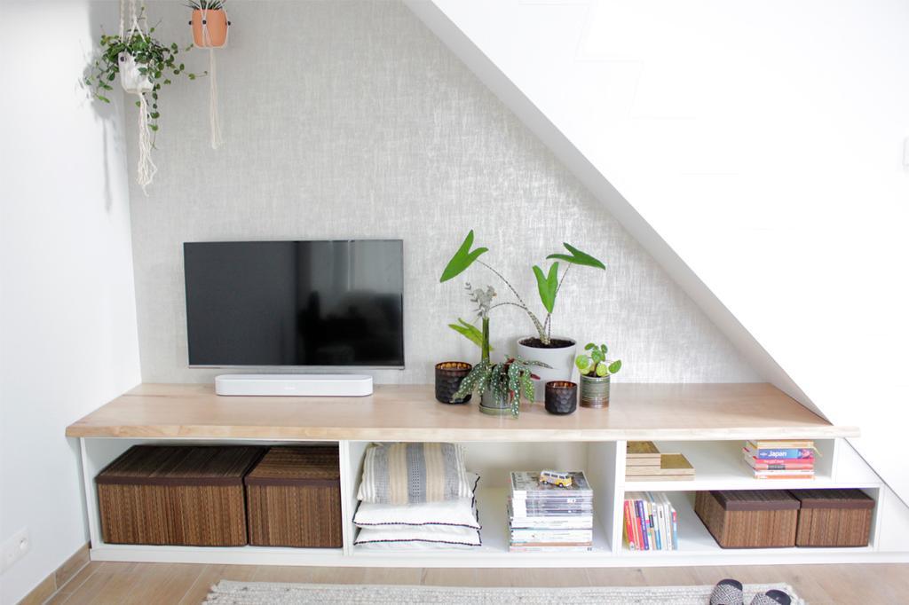Ingebouwde kast met televisie, groene plant en boeken