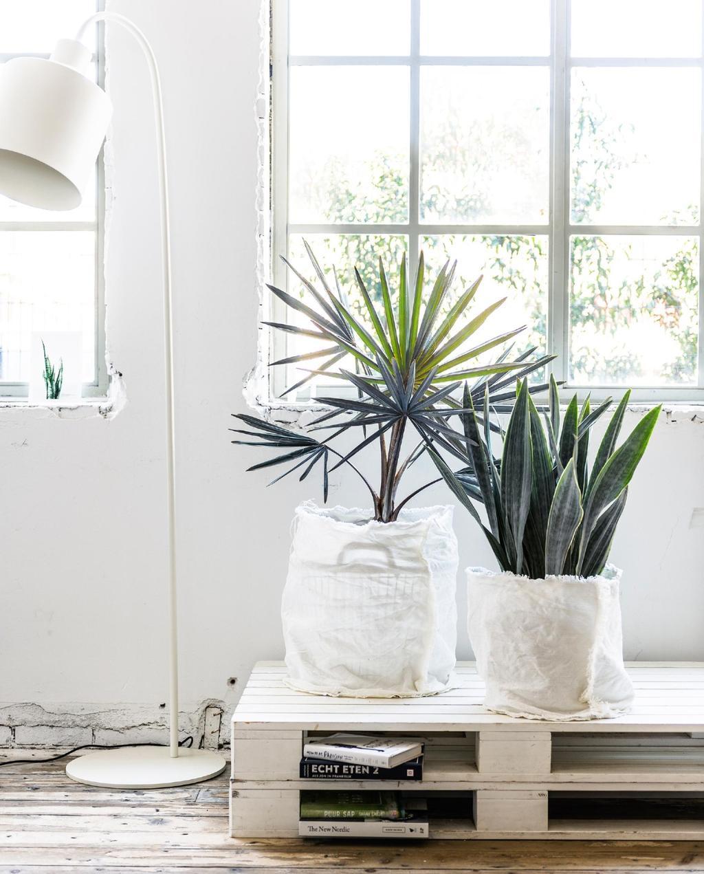DIY plantenzak | planten DIY's