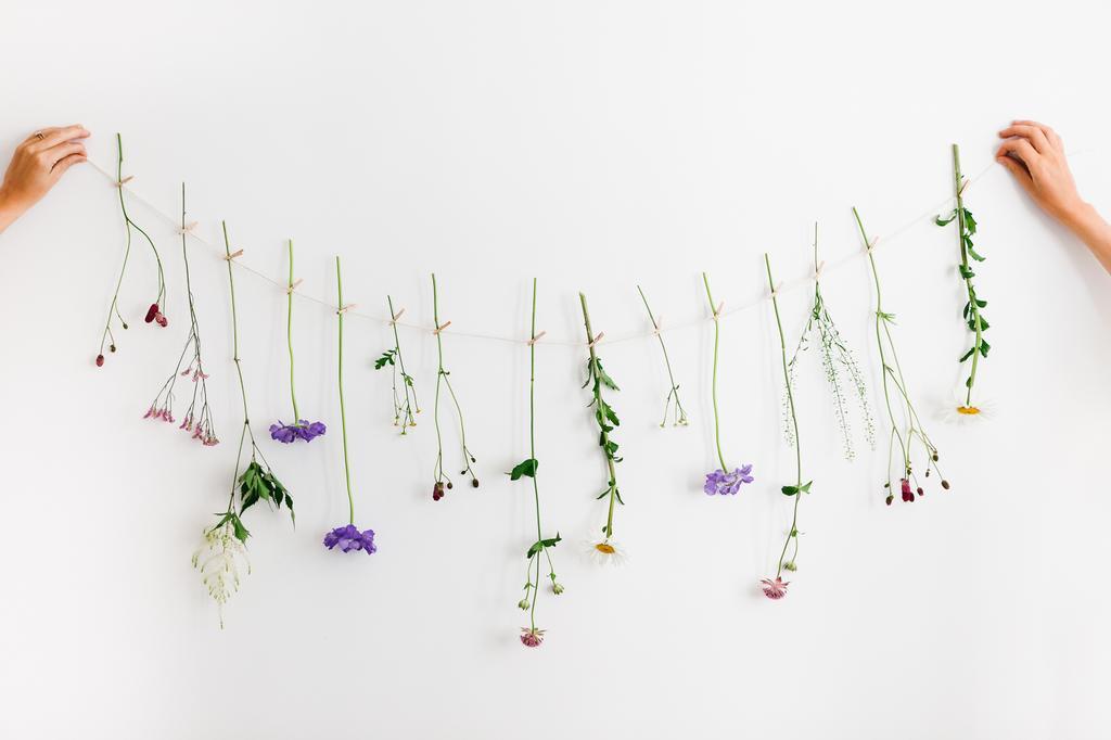doorthee bloemenpracht bloemen hangend