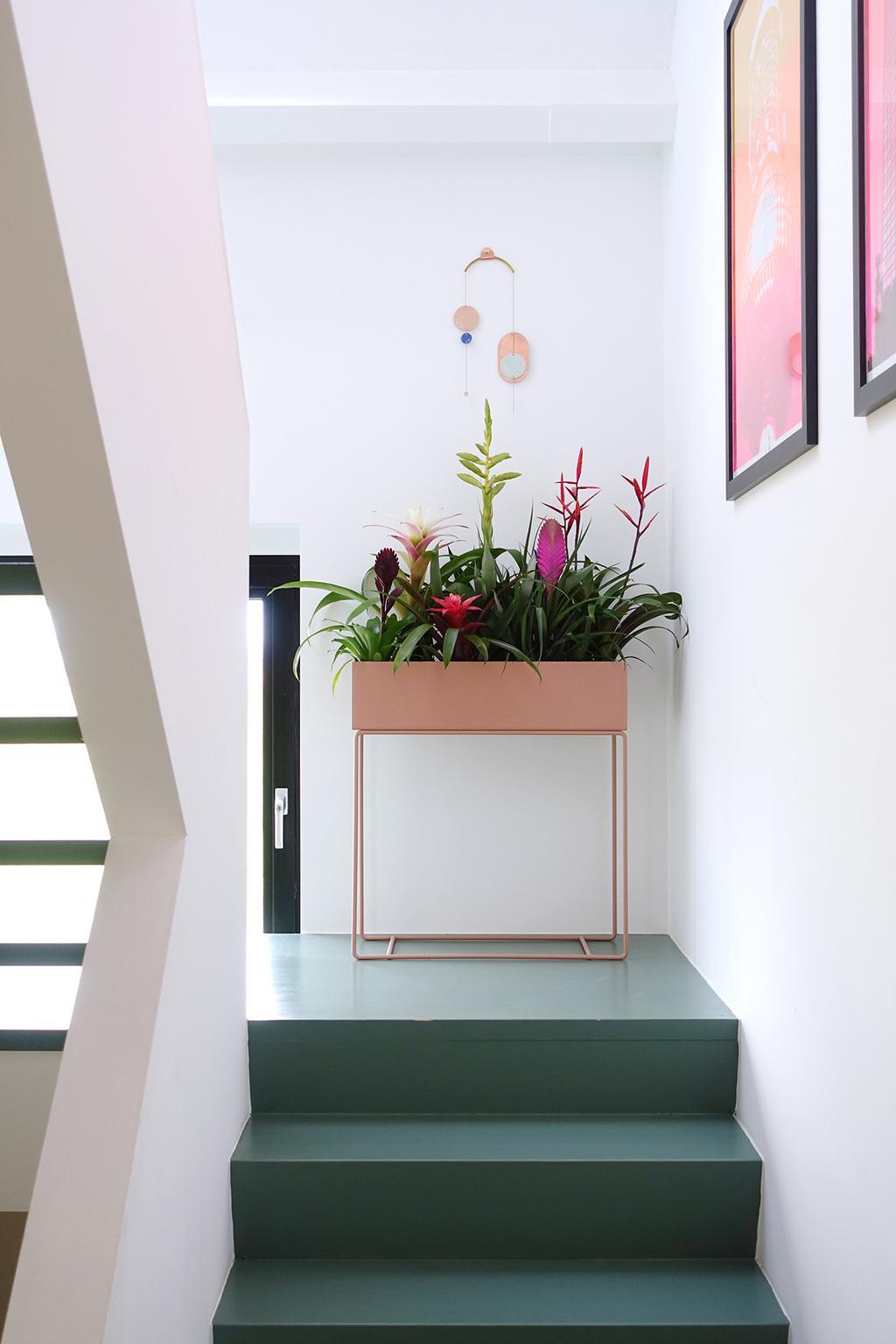 bromelia planten in rose plantenbak in trappenhuis