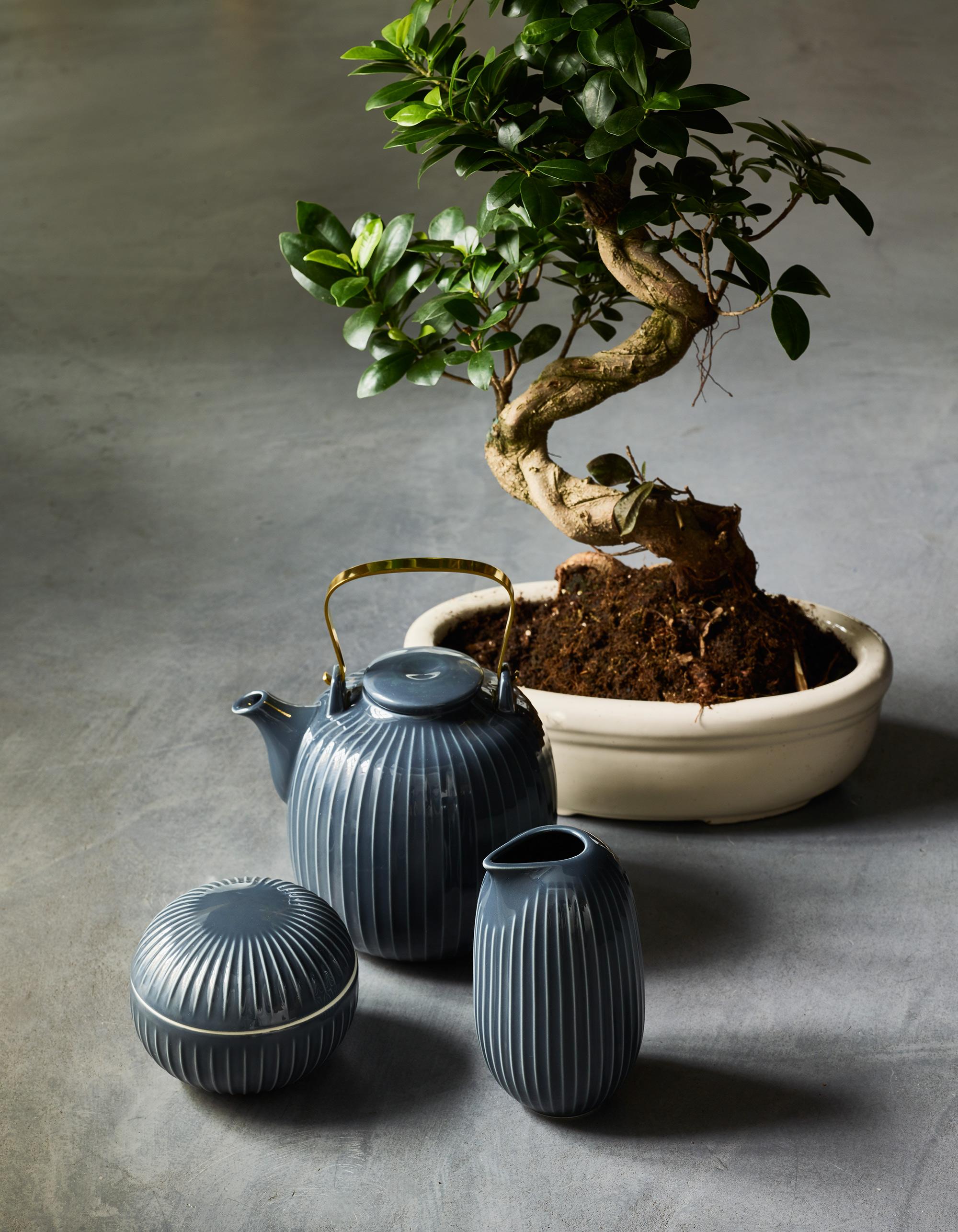 Aziatische woonstijl theepot en plant