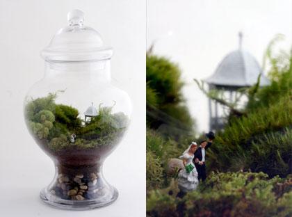 Miniatuurtuin - Twig Terrariums