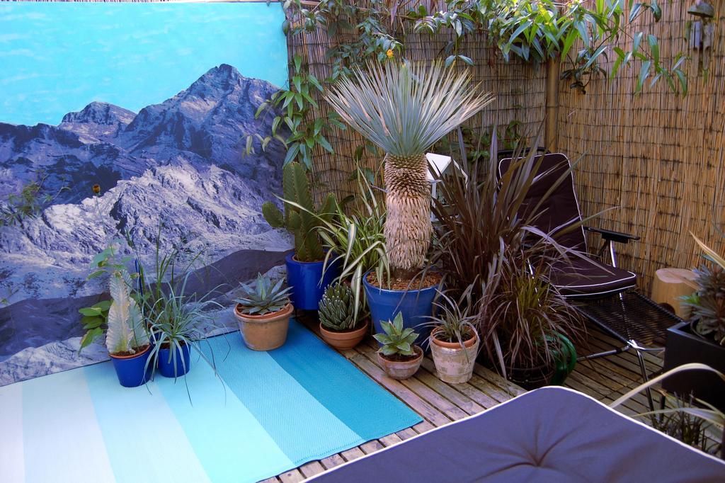 van-een-douchegordijn-is-een-tuindoek-gemaakt-de-vetplanten-kunnen-naar-buiten