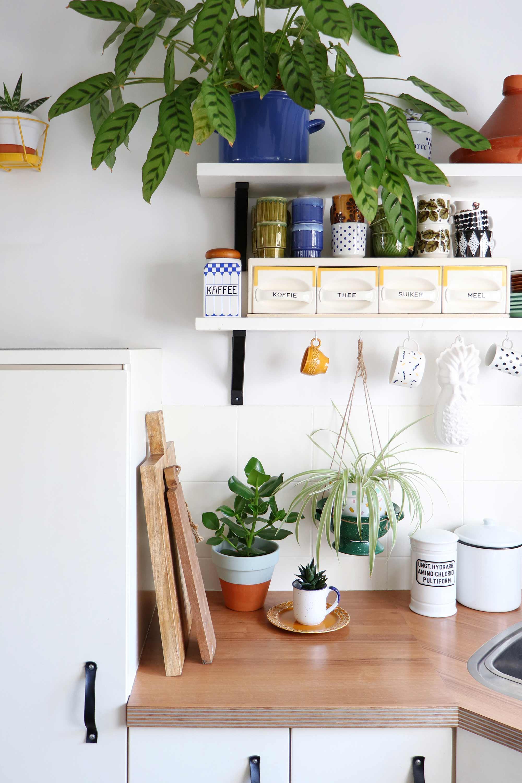 Planten in keuken My Attic