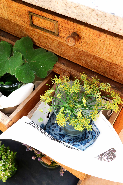 babylonstoren plant