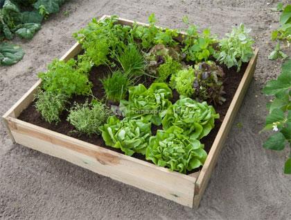 vierkante meter tuin kopen