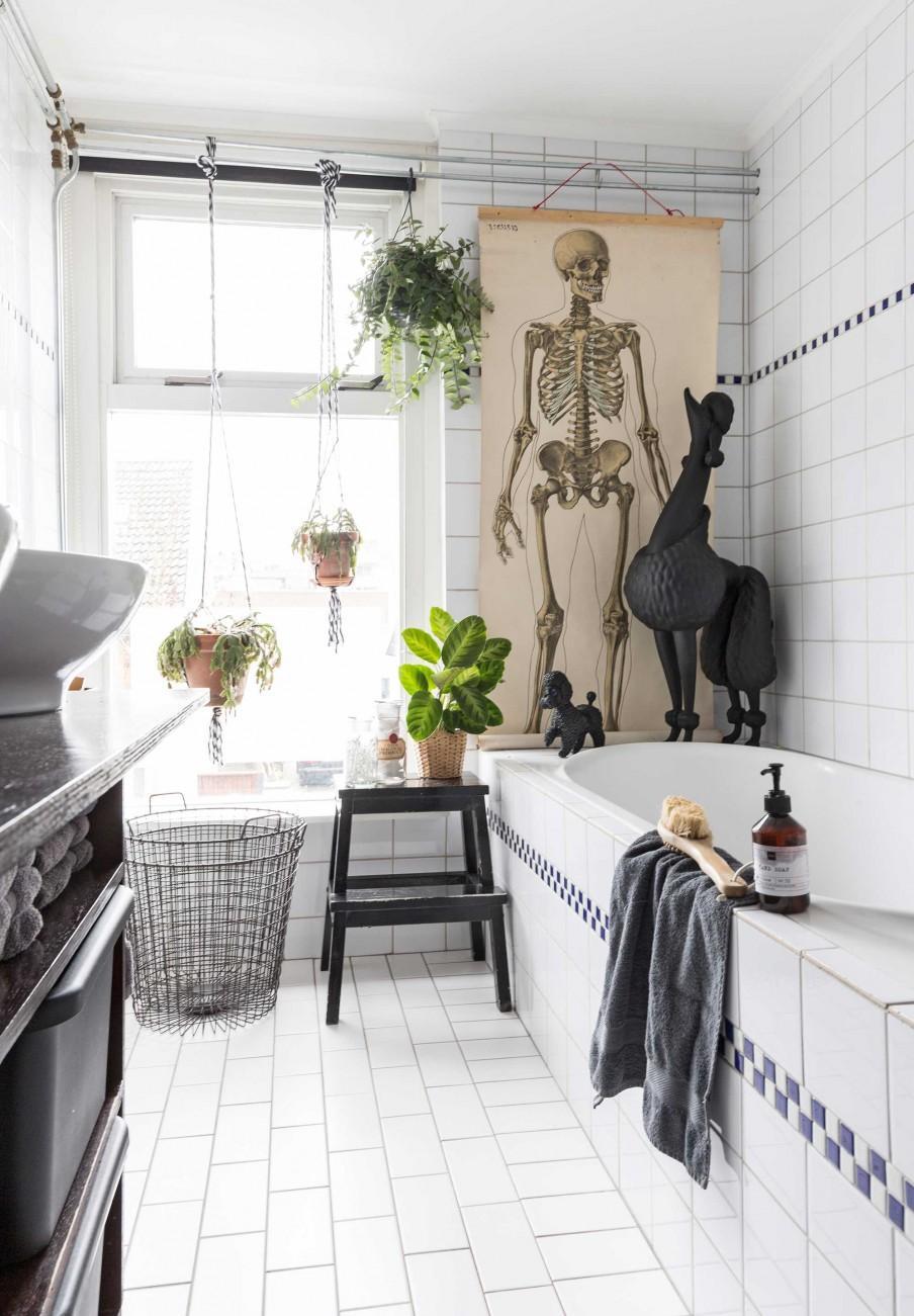 salle de bains poster squelette