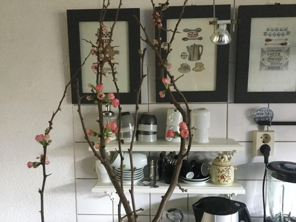 ook-romantische-touch-hoort-in-de-keuken-nu-met-de-aankomende-lente-een-bloezemtak-en-daarna-weer-andere-bloemen-er-staan-altijd-bloemen-in-mijn-keuken-de-schilderijtjes-zijn-al-heel-oud-maar-ook-gemaakt-door-mij-en-ze-passen-nog-steeds-mooi-daar