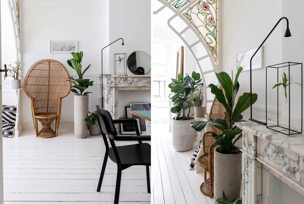 Fauteuil en osier et cheminée en marbre et plantes vertes.