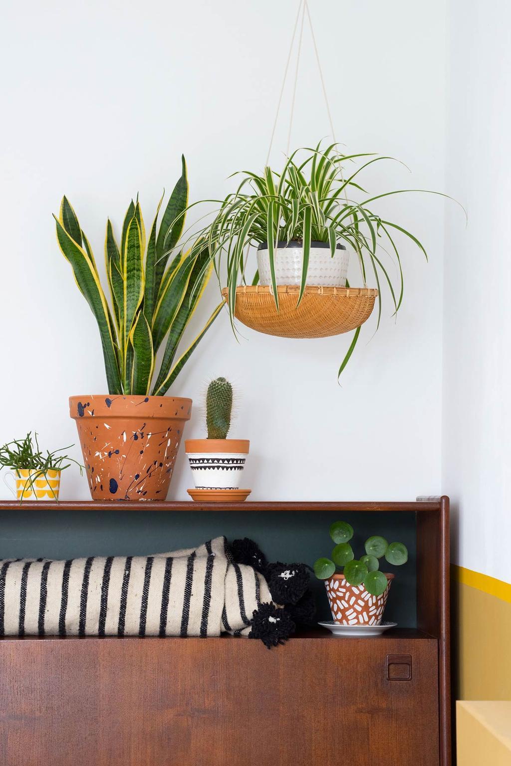 Kast met planten in de slaapkamer