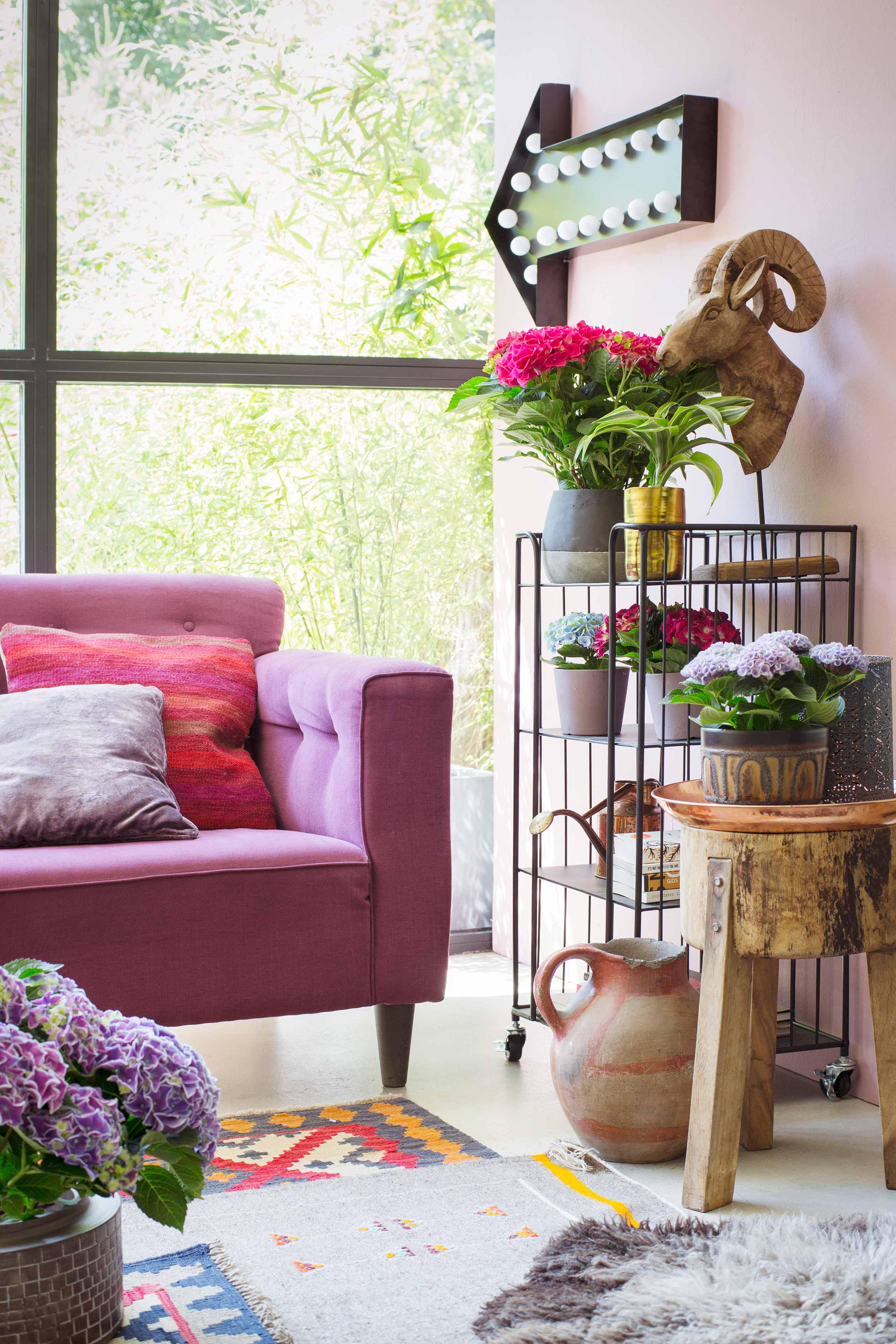 Kleurrijke kamer met hortensia bloemen