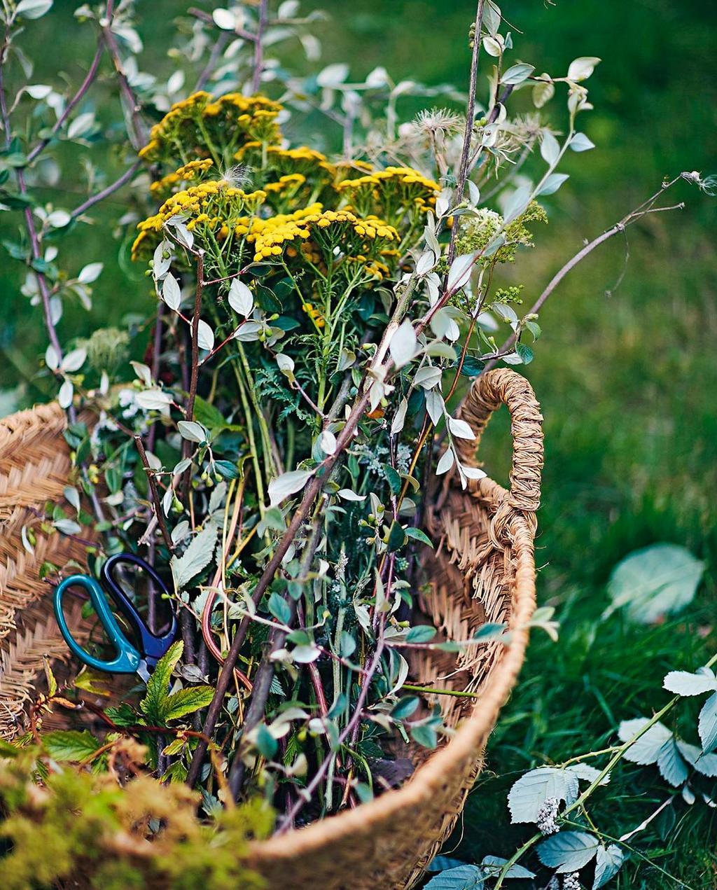vtwonen special zomerboek 08-2020 | mand met geplukte bloemen en een schaar in de pluktuin