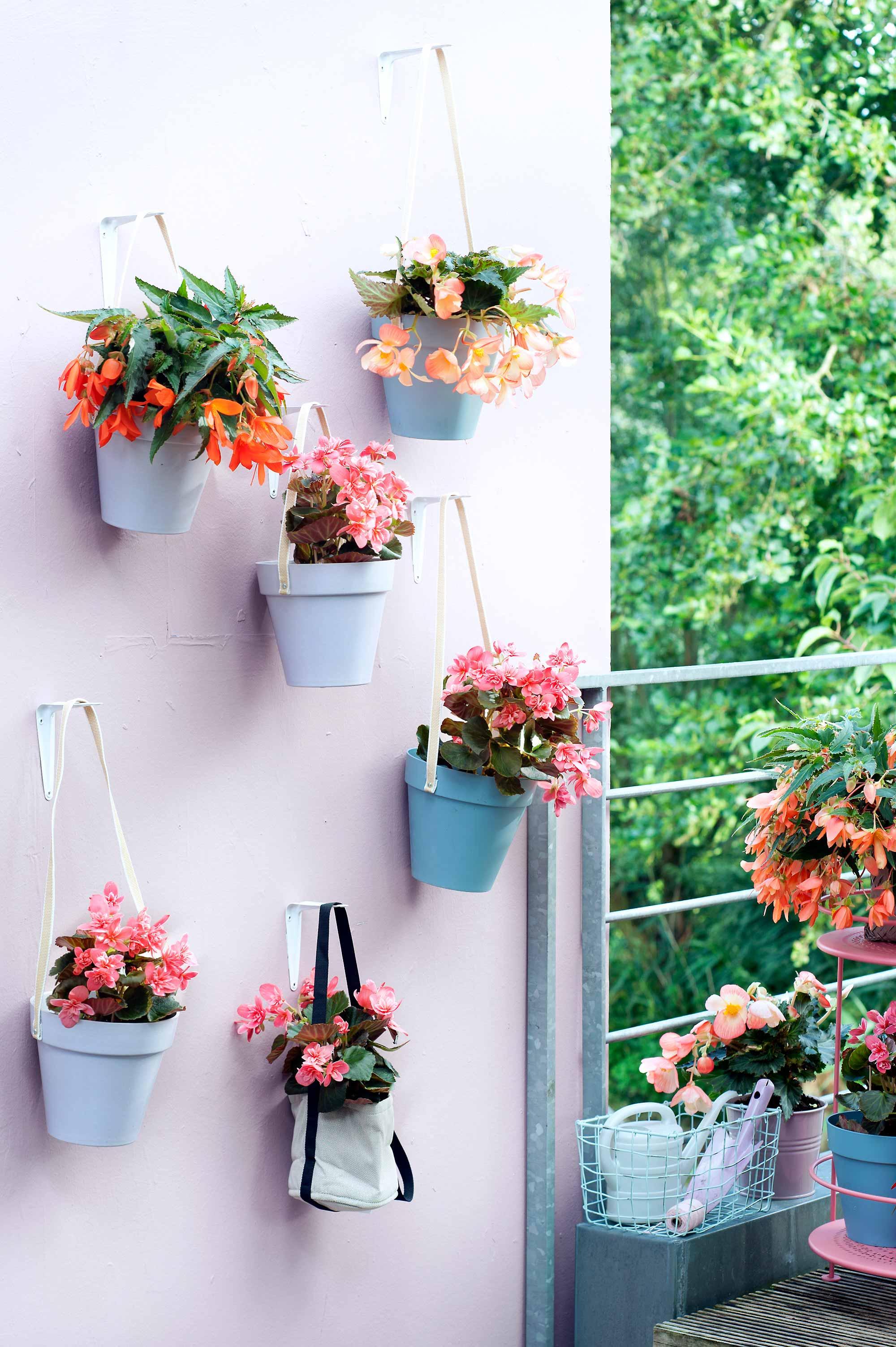 bloemen potten hangen muur pastel