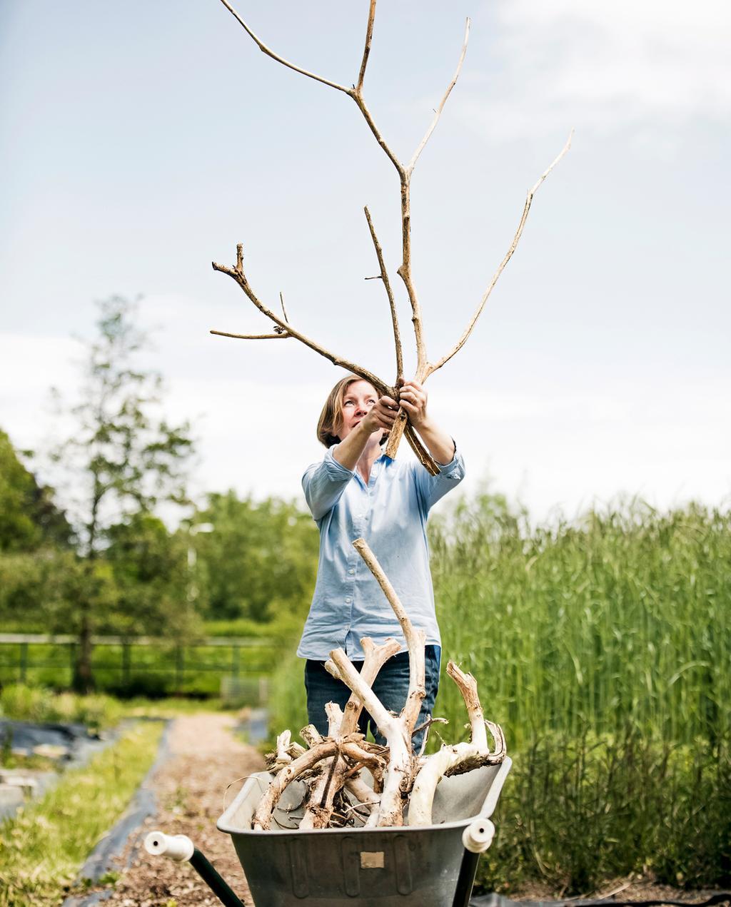 vtwonen 8-2019 | Ambacht Mariette & Denise zelfgekweekte biologische bloemen | buiten hoog gras