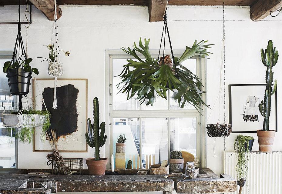 Musthave: de plantenhanger