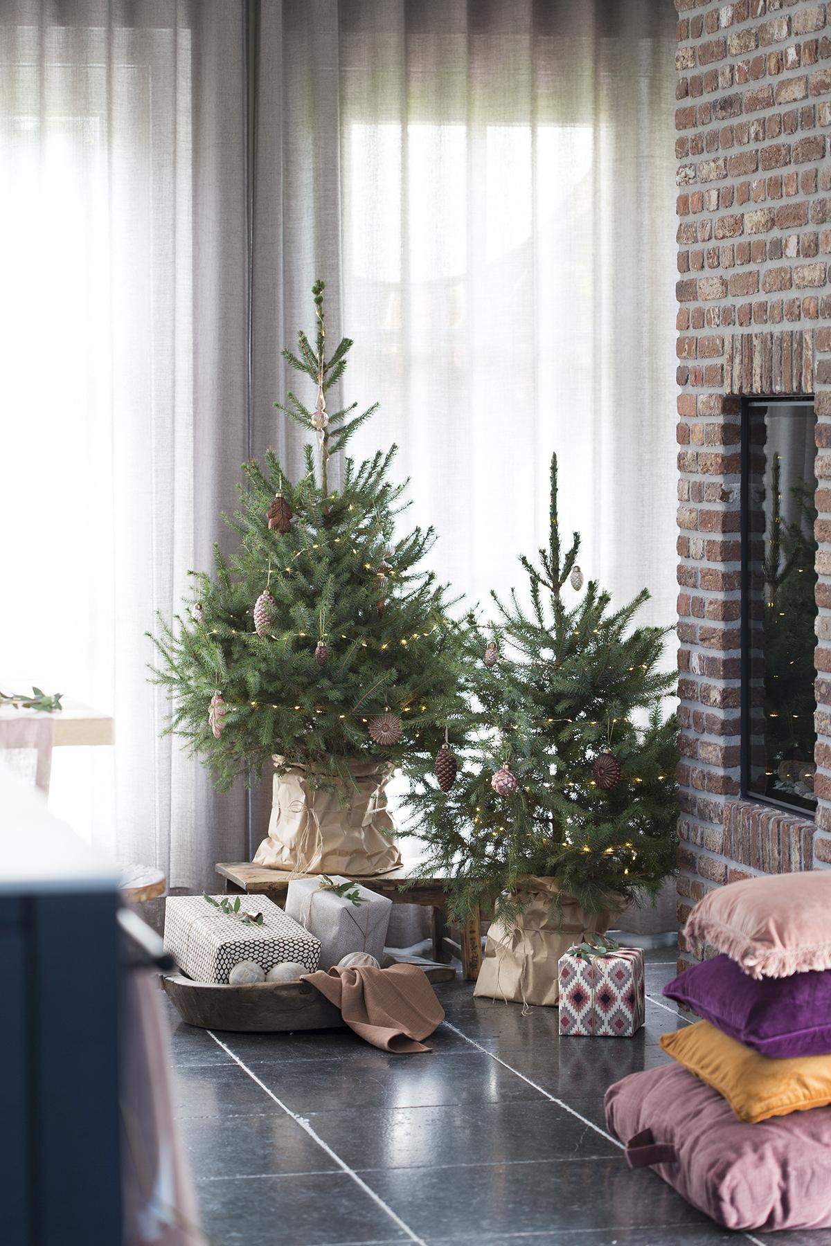 kerstboom plaatsen papieren zak