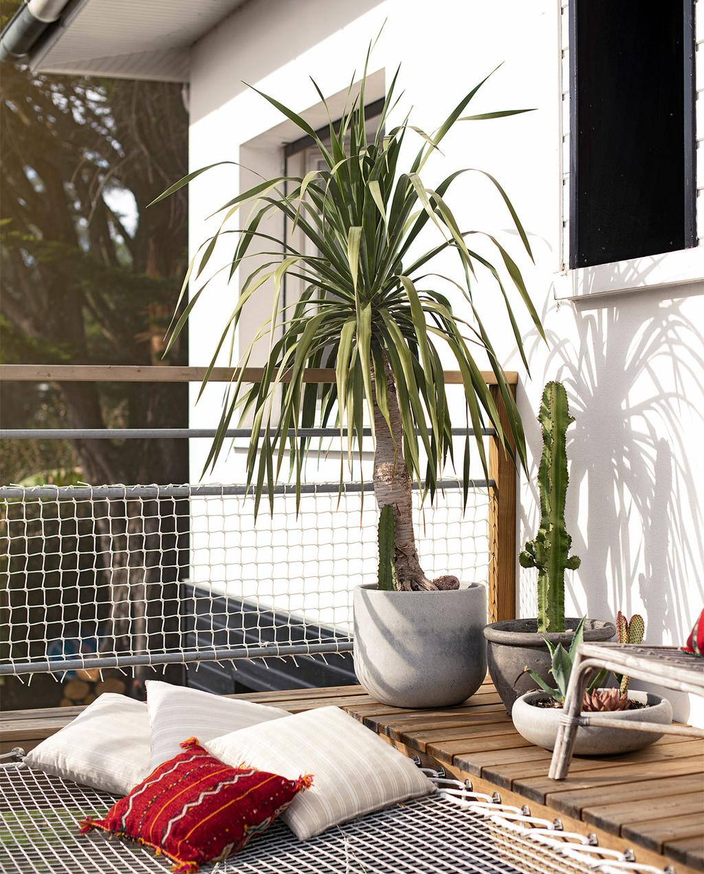 vtwonen binnenkijk special 07-2021 | tuin met een plant in grijze bloempot