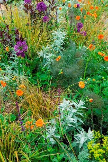 Groen oranje paarse border