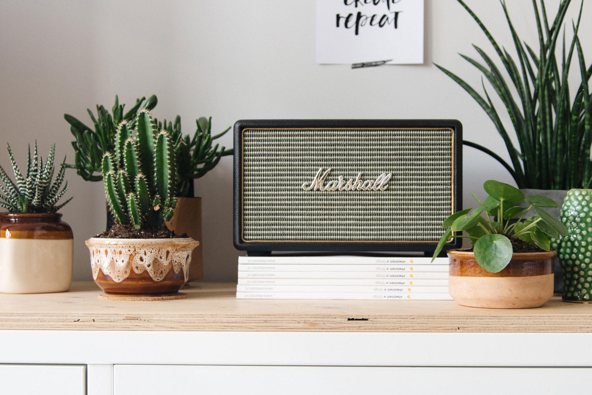 Vintage radio en bloempotjes