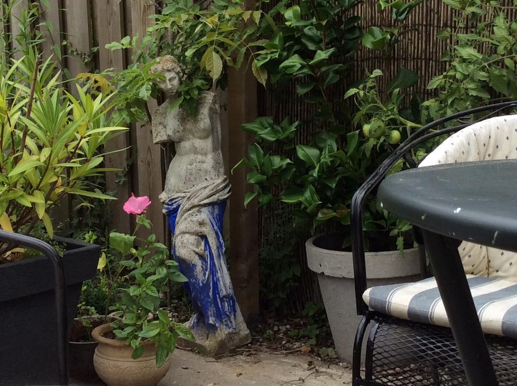 de-tuin-is-pas-2-jaar-oud-maar-nu-al-is-het-een-heerlijke-relax-tuin-en-het-wordt-elk-jaar-alleen-maar-beter
