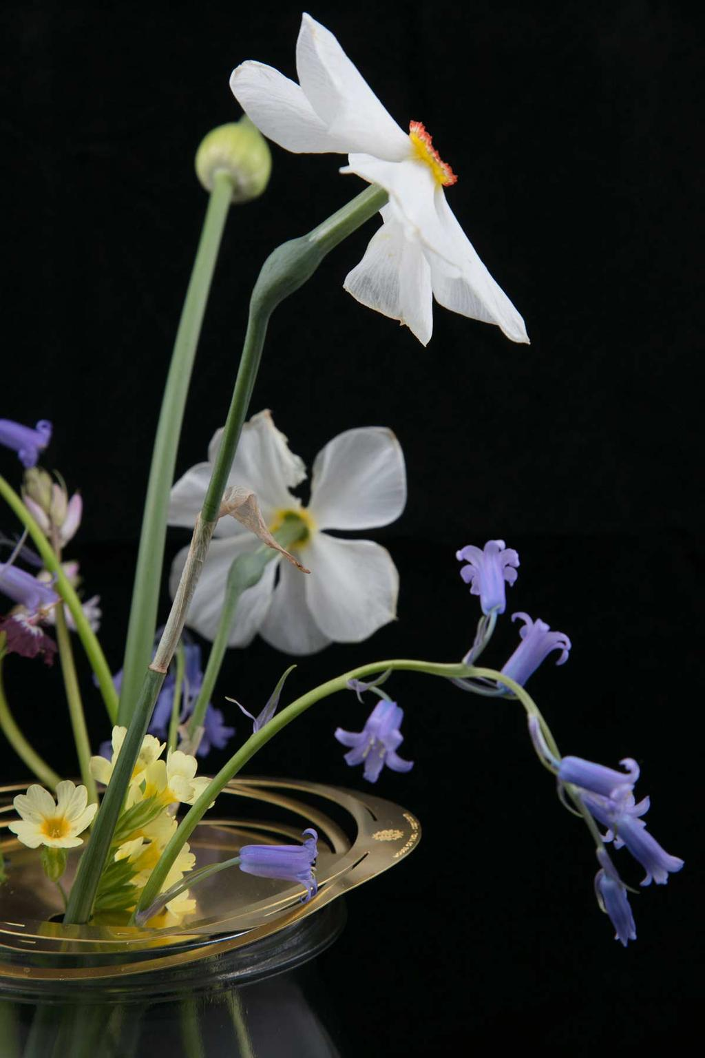 Bloemen met Flower Constellation van House of Thol voor zwarte muur