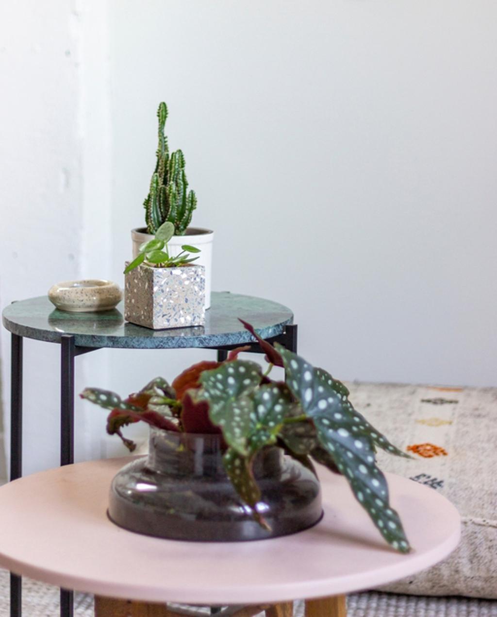planten op roze en marmeren bijzettafels anne-laure