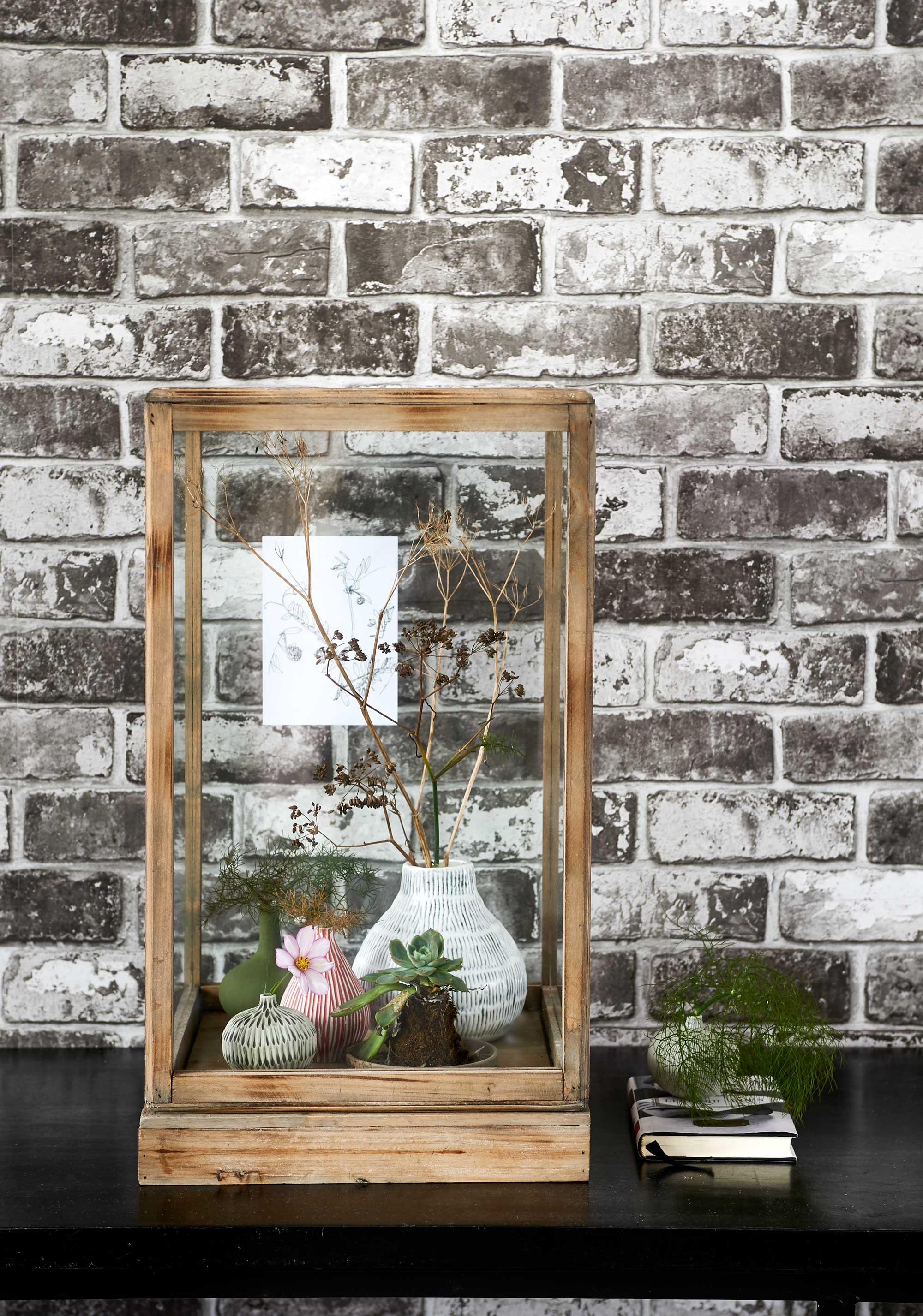 brique plantes