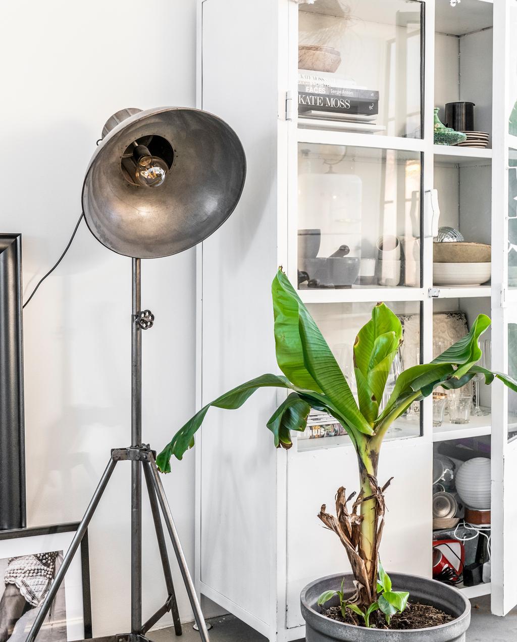 vtwonen binnenkijken special 2019 | plant gedecoreerde kast