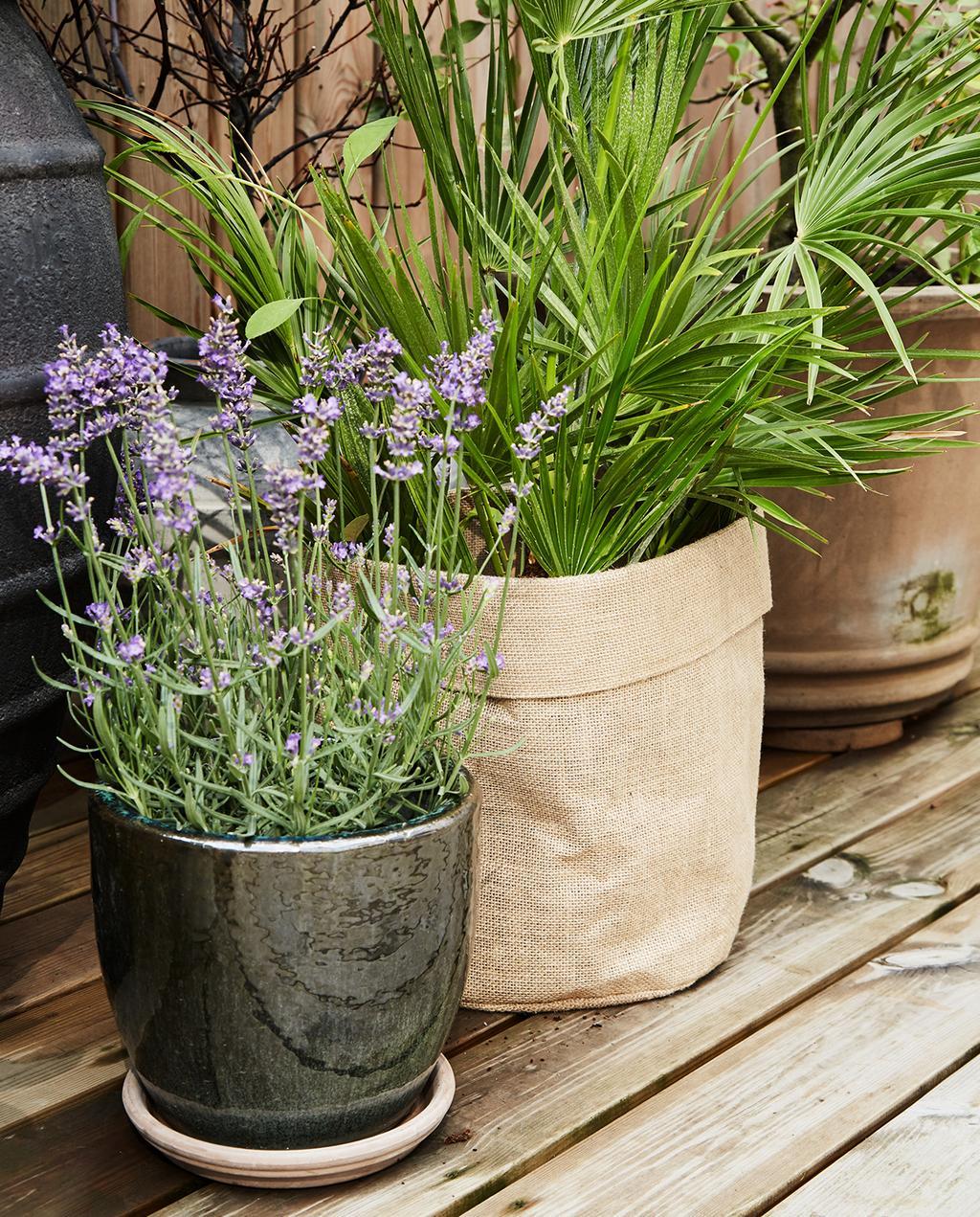 vtwonen tuin special 2 2020 | bloempotten in terra en grijs kleur