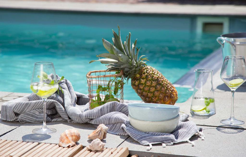 outdoor genieten sfeer ananas glazen water zwembad