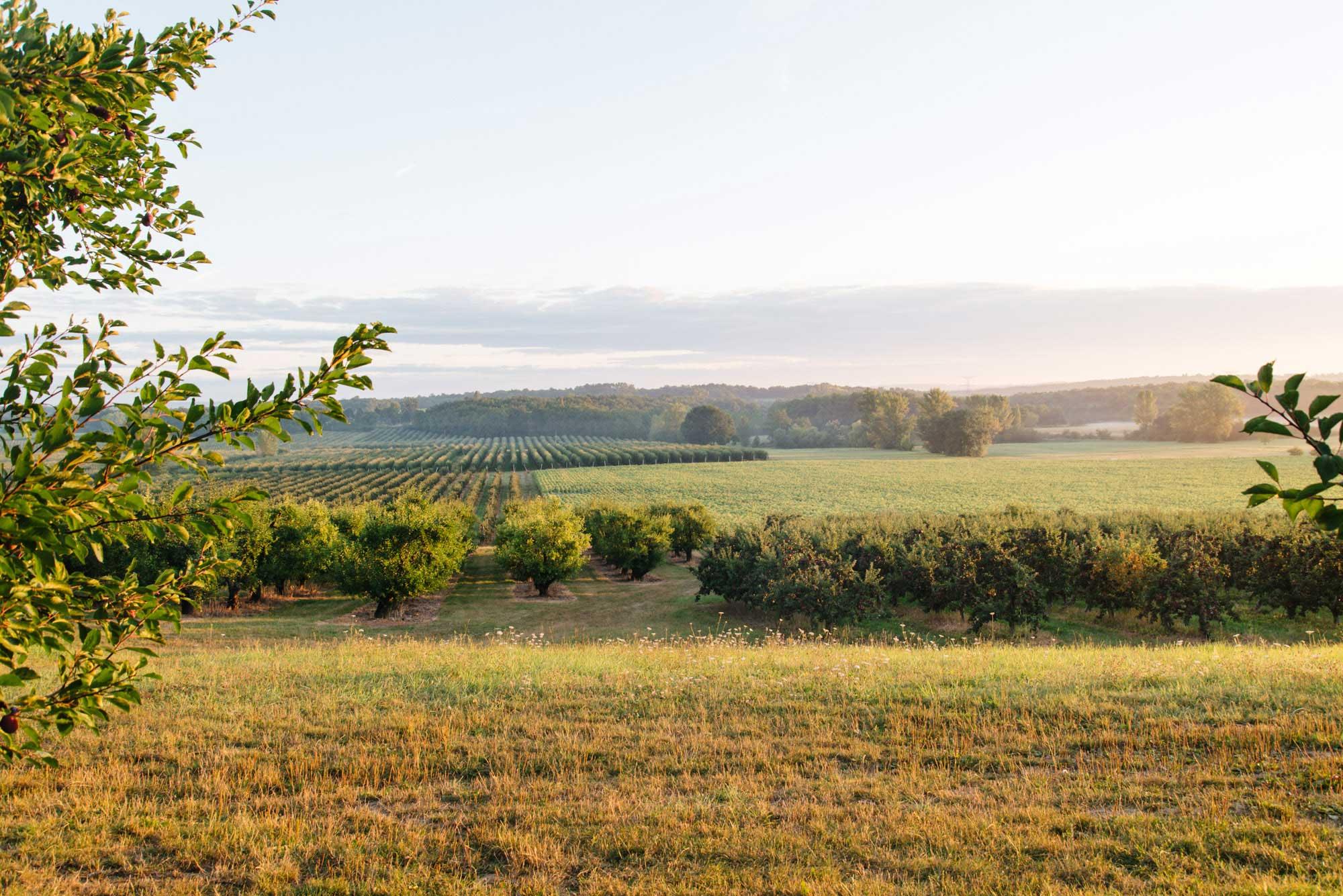 Natuur in Dordogne