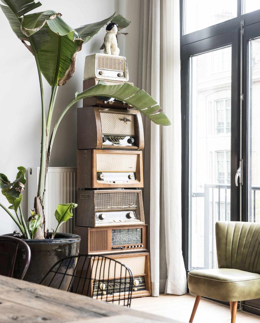 Plantenasiels in Nederland   grote kamerplant   strelizia   vintage   oude radio   fauteuil