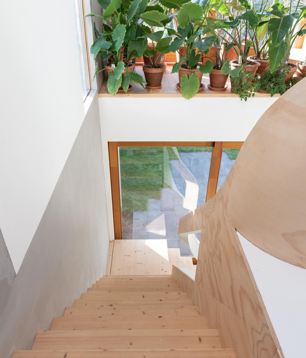 Trappenhuis met planten | vtwonen 01-2021