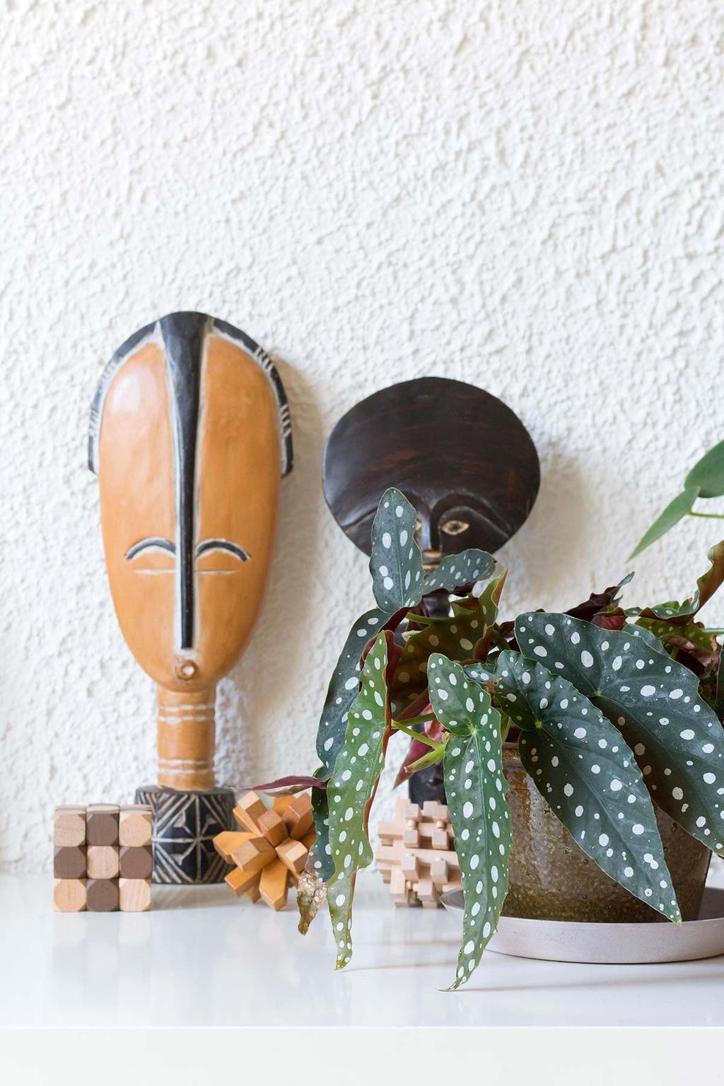 Stippenplant en Afrikaanse kunst.