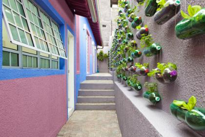 Verticale tuin met PET-flessen