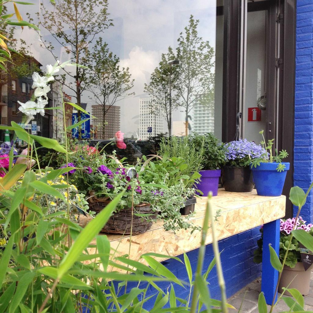 blomster voorgevel bloemenwinkel