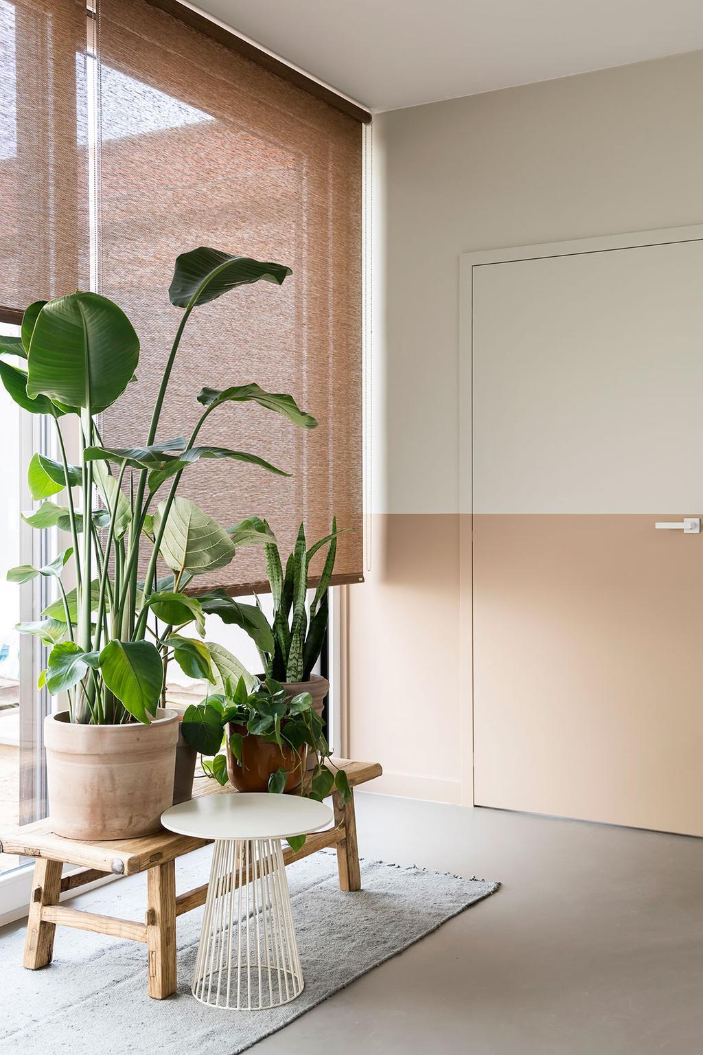 De plantenhoek in de eetkamer van Lien en Nicholas uit de vijfde aflevering van het tweede seizoen van Een frisse start met vtwonen.