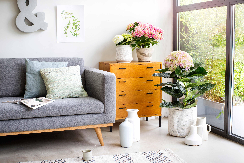 woonkamer met hortensia