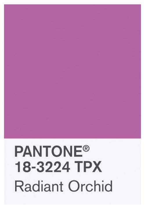 pantone-trendkleur-Radiant-Orchid