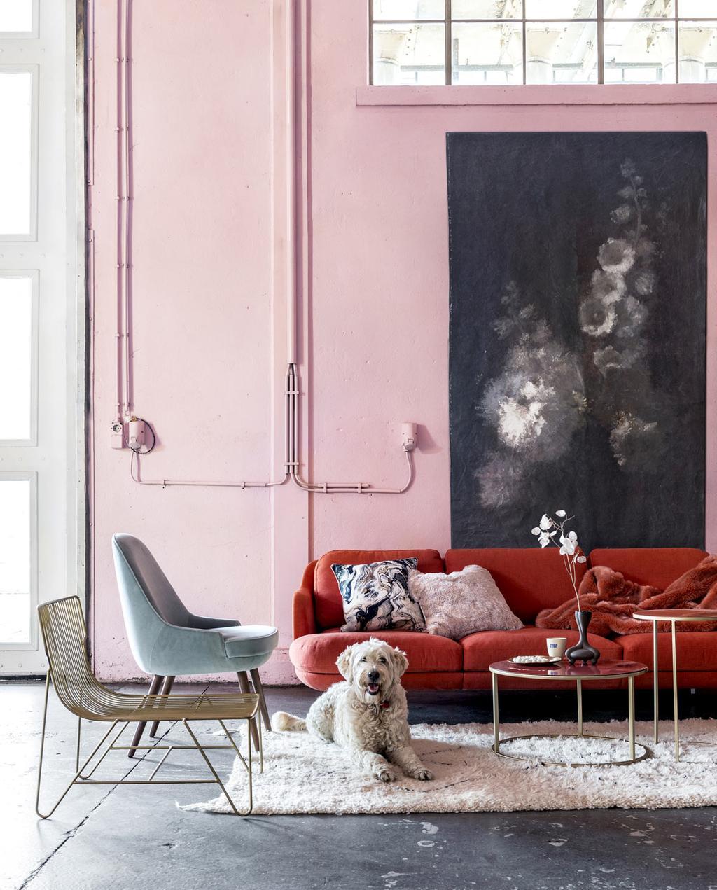 Een aaibare zithoek moet zachte, roze en blauwe meubels en een rode bank.
