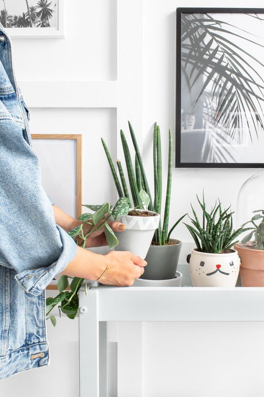 SNIGLAR sidetable met planten