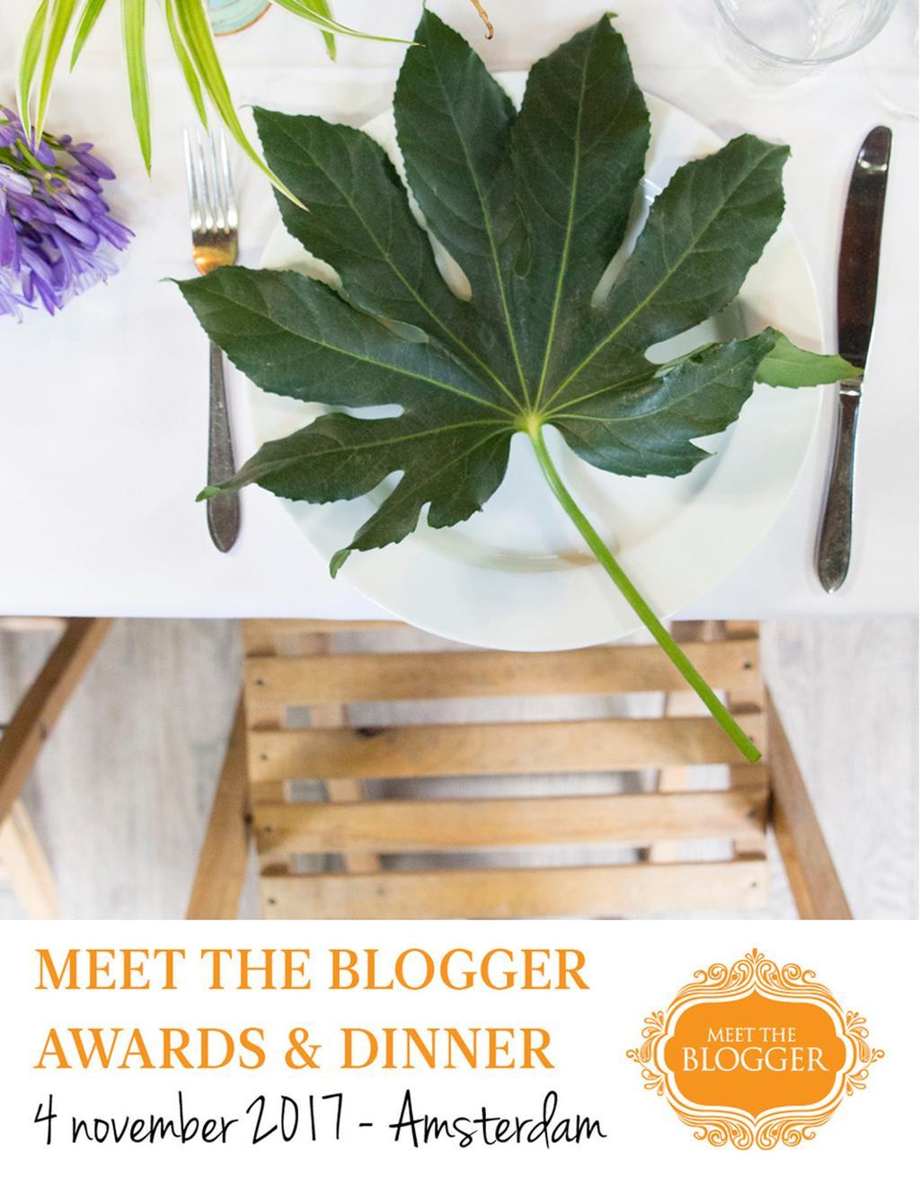 Meet the Blogger Awards