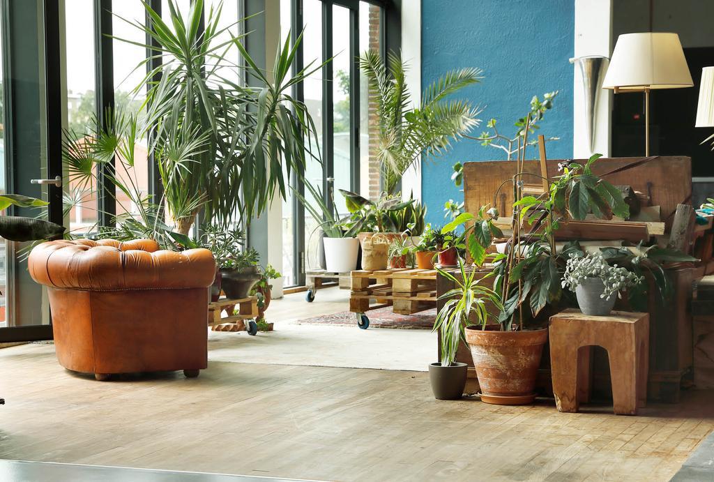 voormalig jeugdgebouw botanisch interieur planten pallet salontafel